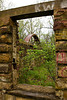 The Cane Hill Mill Ruins, Washington County, Arkansas