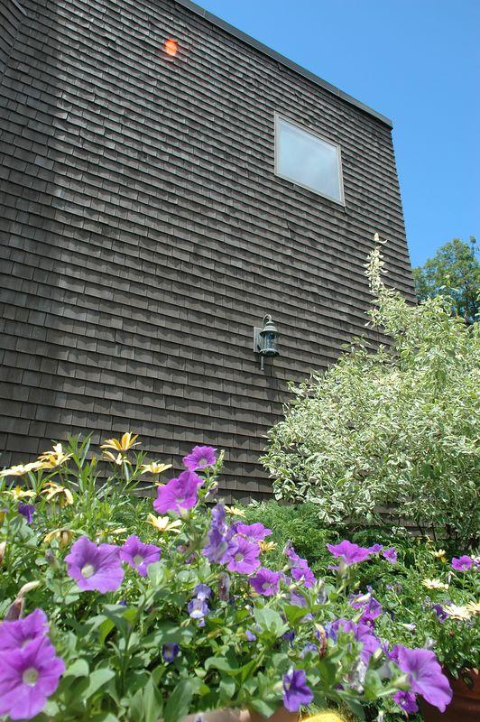Mine Hill Summer 2005