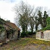 Derelict Cottage,<br /> Loughries, County Down.<br /> Friday, 21st April 2017.