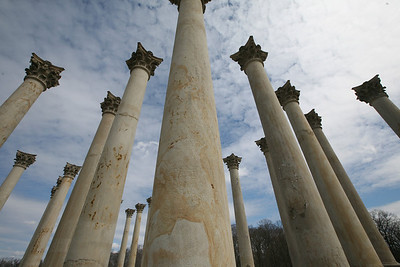 Capitol Columns at National Arboretum