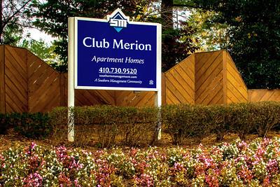 Merion 31