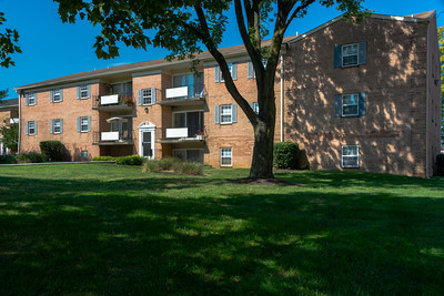 Deertree Apartments