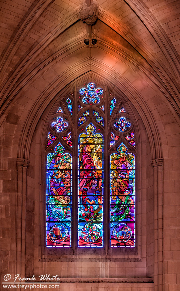 National Cathedral #29