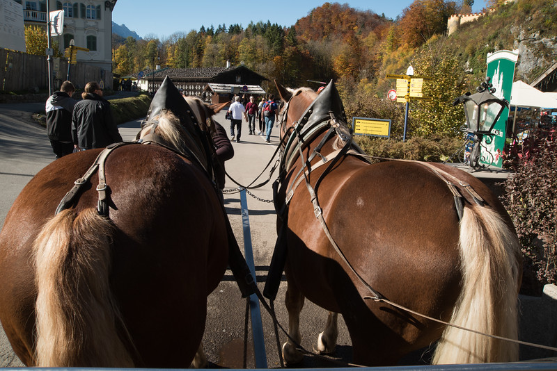 we took the carriage ride up. the horse on the right had gas problems as she farted all the way.<br /> I was lucky; I was behind the horse on the left.