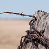 "Rusty Wire Shopia Loren have said <em> ""A woman's dress should be like a barbed-wire fence: serving its purpose without obstructing the view. "" </em> - But no, we have to admit it, we did not think of Shopia Loren when we captured this rusty end of a barbed wire in the middle of nowhere some remote place in Texas. Sometimes it is just the small little details that catches the eye, like the colors and texture in this wire …"