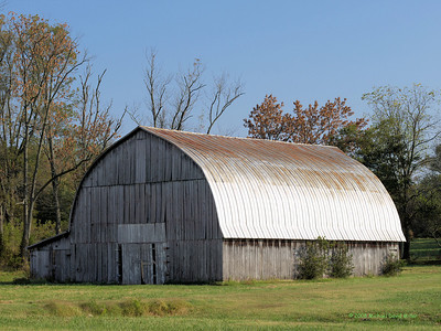 "Dan's Barn near Gallatin, Tennessee. Oly E510 & ZD50/f2 Last month we made a trip to northern Tennessee to visit the in-laws. I had just acquired my 50/f2 and next door there were some interesting barn structures and other things begging to be photographed. One barn in particular caught my attention. It was by far in the best condition. Here it is.  My brother-in-law was driving out when I took this. I saw him stop and talk to his neighbor (the one on whose property this barn was located). I had taken the photograph and had turned to find something else to shoot, when I heard ""Hey! Brother-in-law!"" I turned to see it was the neighbor walking briskly toward me. I knew I was on his property and thought maybe he was going to ask me to get off it. As it turned out, he introduced himself to me - his name is Dan - and he told me that he knew I'd be interested in the lines and lighting inside that barn and he was going to leave it open for a short while if I wanted to go inside and shoot a few before he locked it up.  Well! All I had was the E510 and 50/f2 and no flash other than the pop-up, but I thanked him and took him up on the offer. And Dan was absolutely correct. The bottom floor was pretty yucky and cluttered with junk. But the upstairs... wow! I'm sure lots of you guys could have done better and would probably have composed differently. But I worked with what I had and I refrained from using the pop up. All these are hand held w/IS1. Hope you like. And many thanks to Dan. This was very nice of him."