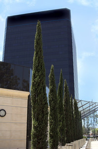 Modern corporate office building in Southern California built of reflective black glass. Nicely landscaped withstainless steel pillars and evergreen trees