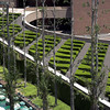 A modernistic walkway lined with maze like shrubs leading to a Southern California corporate office building