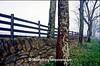 Dry Stone Fence, Scott County, Kentucky