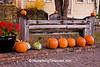 Autumn in Paoli, Dane County, Wisconsin