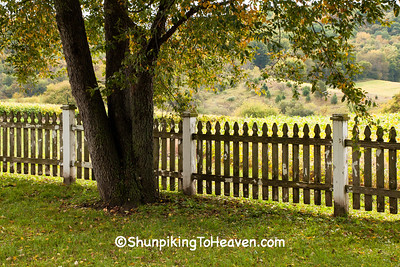 Picket Fence, Richland County, Wisconsin