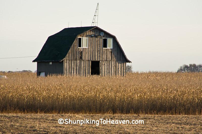 Barn with 'Face', Cerro Gordo County, Iowa