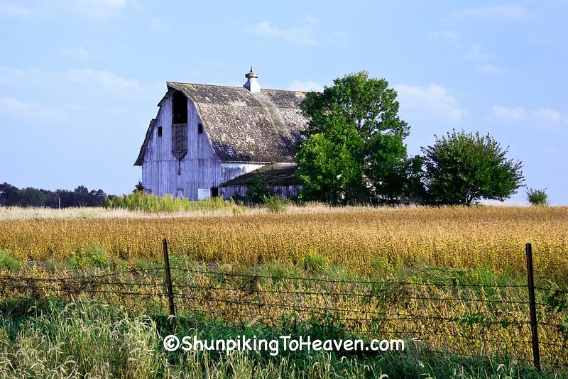 White Barn with 'Face', Dallas County, Iowa