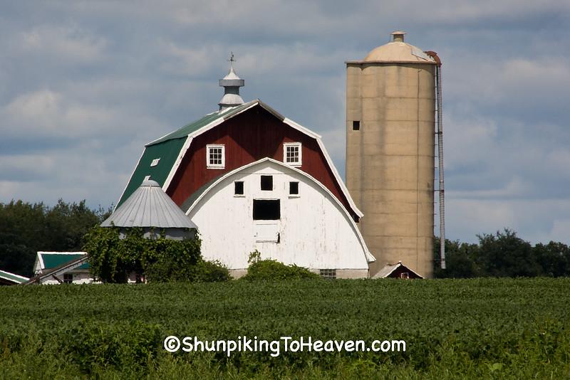 Farm Scene with 'Face', Dane County, Wisconsin