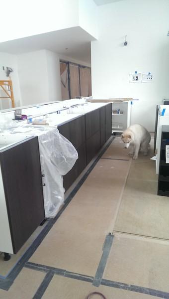 2015-07-05 Kitchen drawers