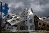 Frank Gehry's Center for Brain Health in Las Vegas
