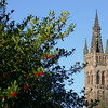 Glasgow University spire
