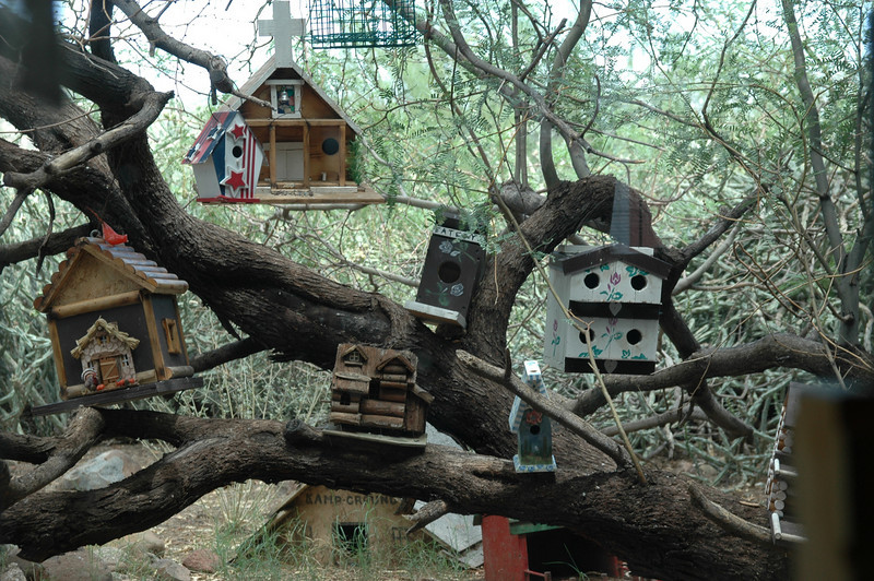 The Bird Hotel - Black Canyon, AZ