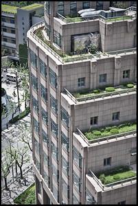 Shanghai rooftops, China.
