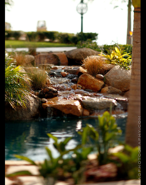 Richard Cohen Landscape Installation, Newport Beach, CA, 1-11-12