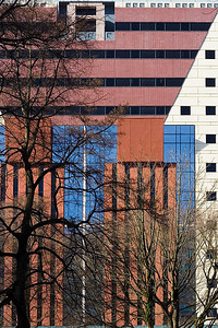 Portland Building and Bare Trees Sigma 18-50mm f/2.8 EX DC