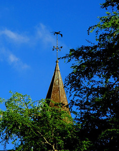 The Lili'uokalani church steeple with the Iwa weather vane is seen through the tree branches against a blue sky North Shore of O'ahu, Hawai'i