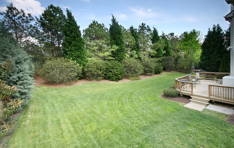 This view illustrates privacy of backyard on all three sides and delivers good scale of height (40 feet tall trees) and density of barrier along perimeter.