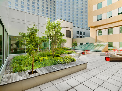 Recover-Green-Roofs-0006