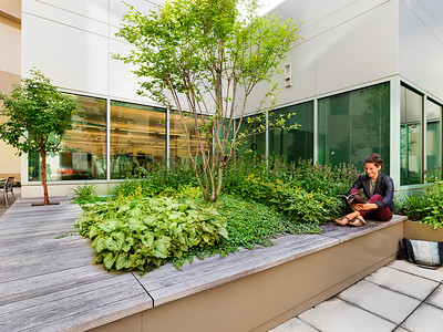 Recover-Green-Roofs-0022
