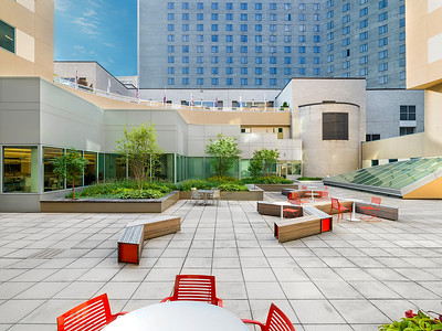 Recover-Green-Roofs-0007