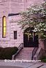 Dogwood, Bradley Methodist Episcopal Church, Hancock County, Indiana