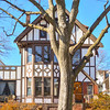 Tree house in Weehawken,New Jersey