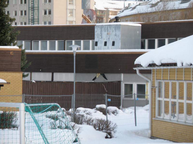 Röllingby Gymnasium (21)