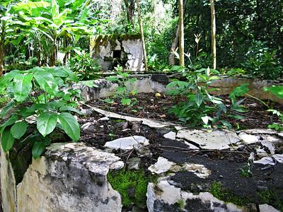 HI 2011 Maui 51