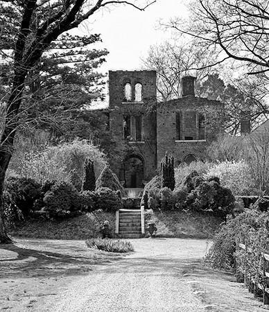 Barnsley's Grand Dame