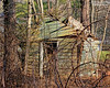 Old rotting rustic shack at Muttontown Preserve.