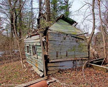 Old rustic shack ready to collapse in Muttontown Preserve.