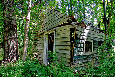 Old rotting shack at Muttontown Preserve. I don't think it will be around much longer.