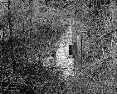 Rustic window in Muttontown Preserve.