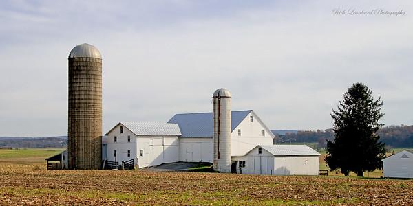Rustic farm.