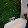 Tub in the master-bath. That is actual plantings on the wall.