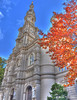 Cathedral of the Blessed Sacrament with Orange Tree