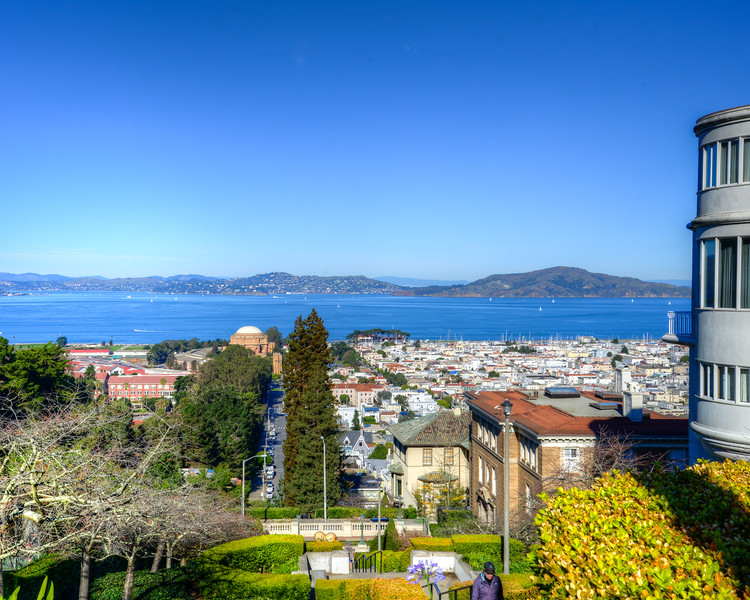 San Francisco Christmas (3 of 14)
