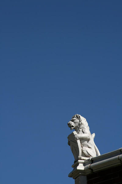 This lion guards a building in Grand Rapids, Michigan. Brilliant blue sky in the background.