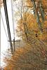 Autumn Roads copyrt 2015 m burgess