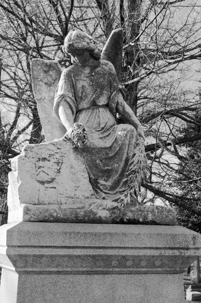 Bellefontaine Cemetery-0339