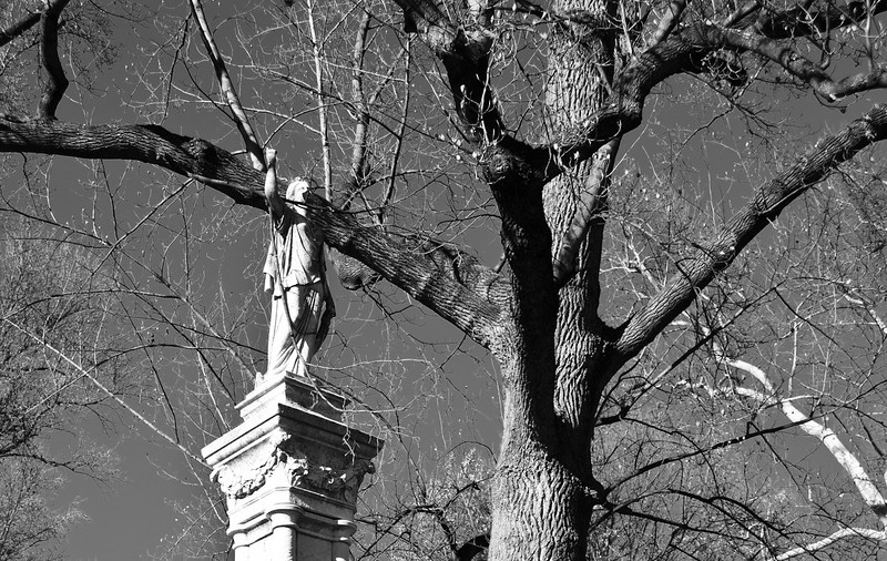 Bellefontaine Cemetery-0305