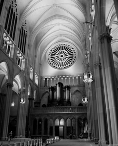 View of the Nave facing West - with the secondary pipe organ visible just below the giant rose window.