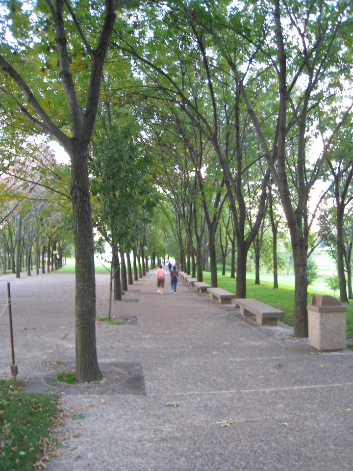 Tree lined walkway leading toward the arch