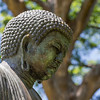 The Great Buddha of Kamakura in Foster Garden, O`ahu, Hawai`i